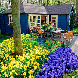 Les Pays-Bas côté jardins
